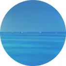 Картина маслом – Ясный день – диаметр - 1000 мм (автор-Елена Романюк)